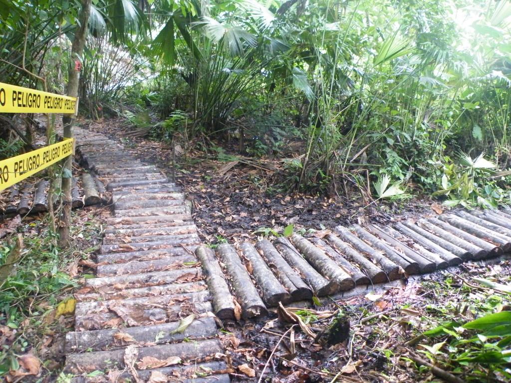 senderos de madera sobre piscinas de desechos de petroleo