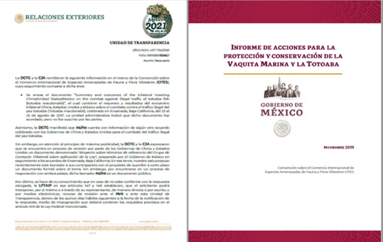 Documentos internos sobre las negociaciones diplomáticas entre México China y Estado Unidos, así como el informe presentado por México ante Cites en 2019. Crédito: Naguales