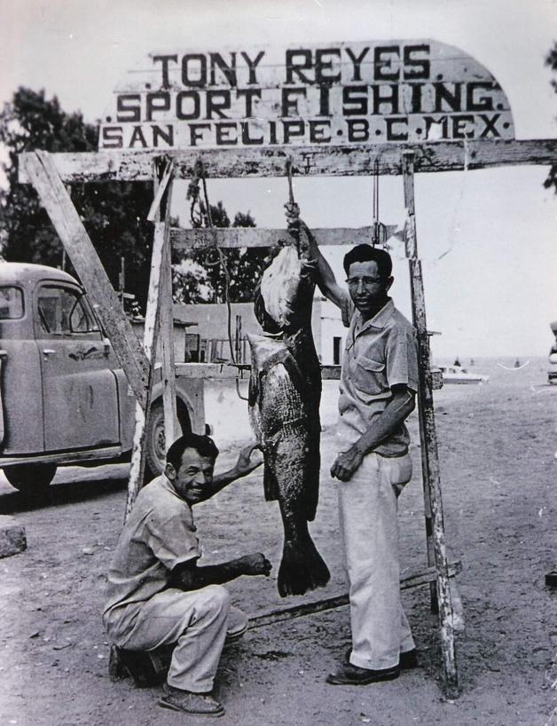Pesca deportiva en San Felipe, Baja California, durante la fiebre de la totoaba en la primera mitad del siglo XX. Crédito: Ernesto Sosa